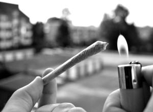 Bild-Cannabis
